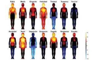 emociones-cuerpo-e1438298552443