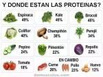 Donde estan las Proteinas