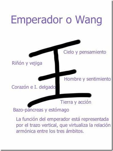 Ideograma Wang, emperador explicado con sus respectivos órganos_thumb[2]