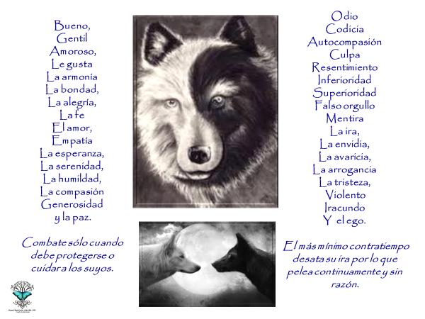 Lobo Negro Blanco