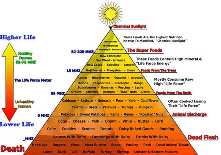 Frecuencia Vibracional de los Alimentos